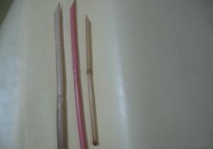 Kargı Kalem